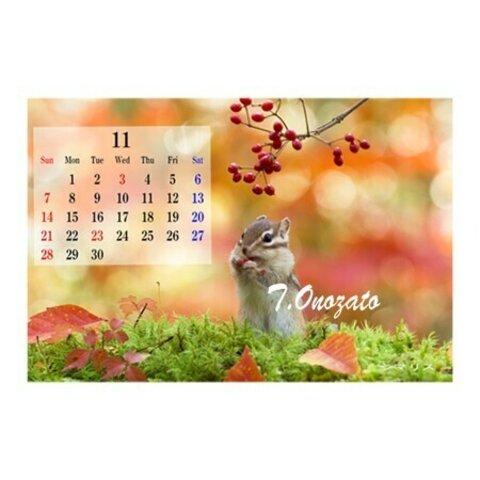 壁紙用画像データ(11月カレンダー付)