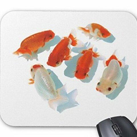 群れ泳ぐらんちゅうのマウスパッド:フォトパッド( 金魚シリーズ )