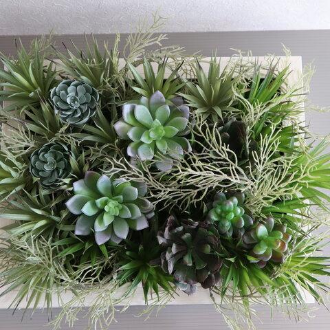 【送料無料】多肉植物の壁掛け:大きめ白い額(造花・アートフラワー)