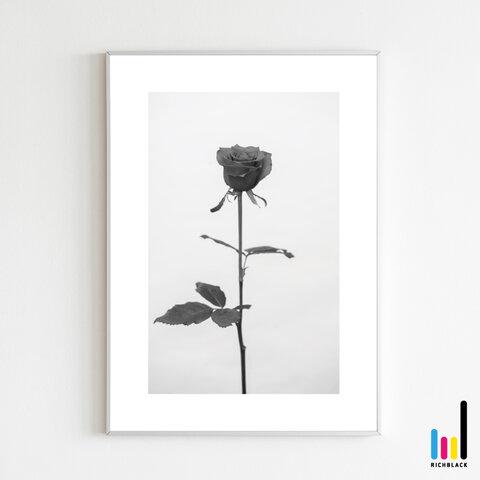 バラ モノトーン アート ポスター A4 ローズ 薔薇 LOVE モノクロ 白黒 写真 北欧 北欧風 北欧インテリア 雑貨 ドライフラワー プリザ シンプル ナチュラル インテリア