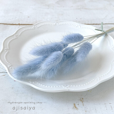 元祖もふもふ花材 ラグラス ベビーブルー ドライフラワー