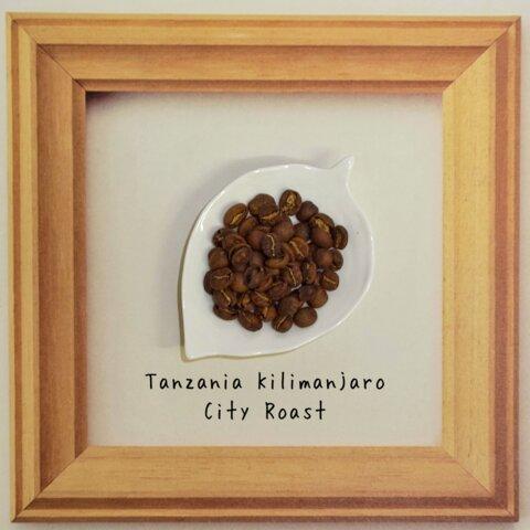 タンザニアコーヒー(中煎り コーヒー豆)100g