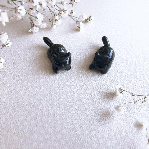 魔法の黒猫*猫物語⌘¨∮