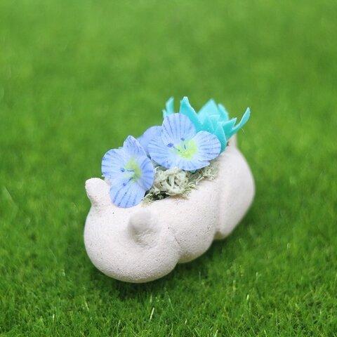 猫鉢(大)オオイヌフグリ
