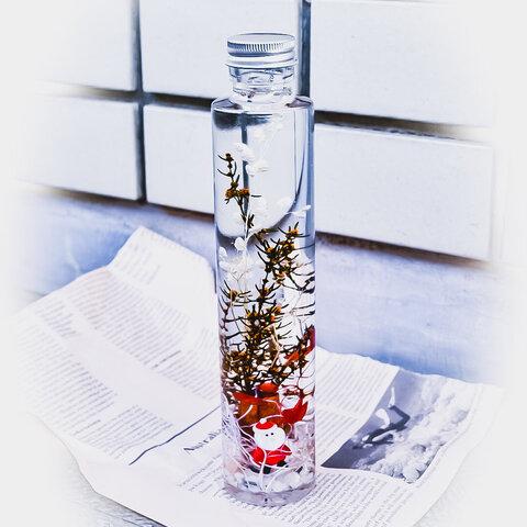 *植物標本・ハーバリウム*サンタ*クリスマスverハーバリウム