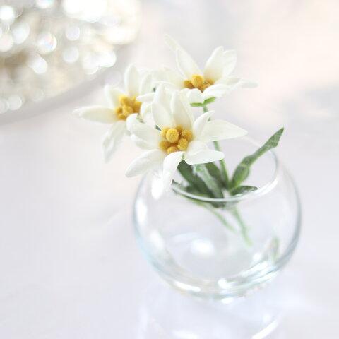 花言葉は『大切な思い出』枯れないこぼれない エーデルワイスのウォーターアレンジ