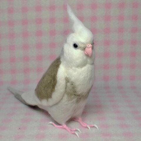 リアルサイズ オカメインコ WFパイド  ホワイトフェイス 羊毛フェルト 鳥のオブジェ メモリアルギフト ライフサイズ