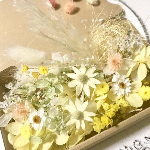 優しい花フランネルフラワーと花かんざし🌼ドライフラワー花材詰め合わせ