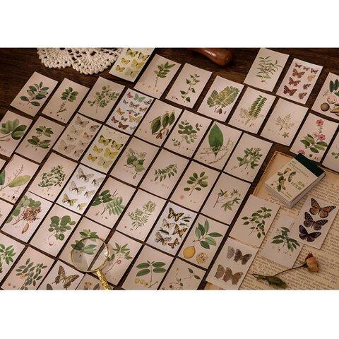 豆本風シール 植物と蝶々 50枚 ジャンクジャーナル コート紙  Vol.6