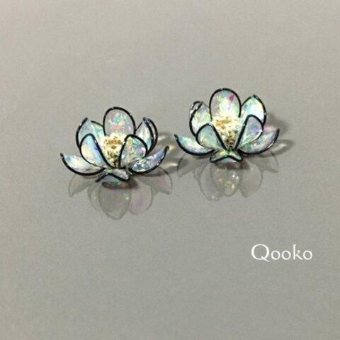 オパールの蓮の花 Black edge
