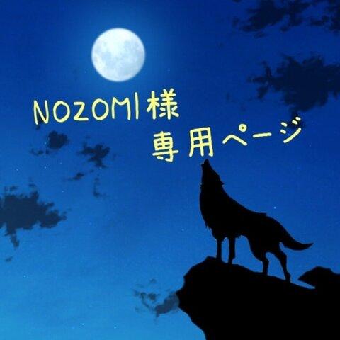 NOZOMI様専用ページ