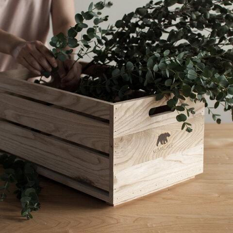 栗の木ボックス(深)