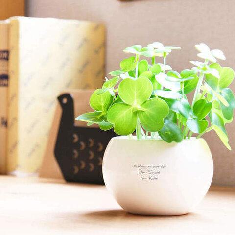 【名入れ】お手入れ簡単な造花の観葉植物 CT触媒グリーン クローバー