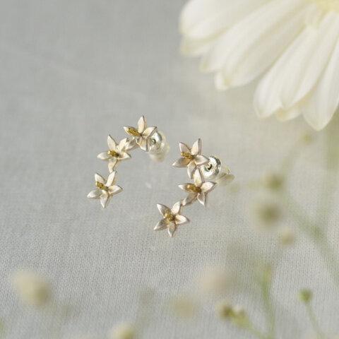 みかんの花のピアス、リース
