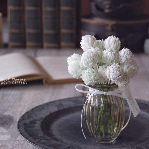 お花いっぱい! シロツメクサ アナイスグラス  …S494