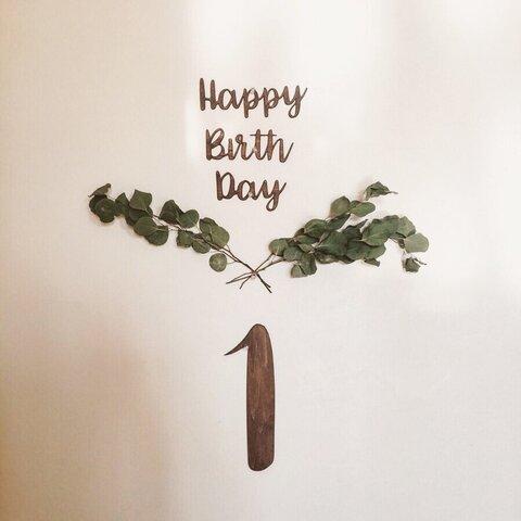 木製 誕生日【バースデーセット】 ユーカリ レターバナー  飾り