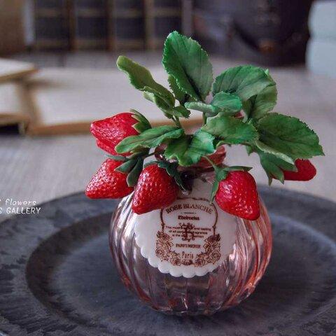枯れないイチゴ♡ 苺をぽってりガラスボトルに飾って・・・ピンクボトル Ⅰ445