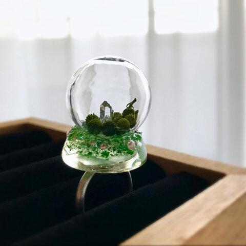 ring 遺産 heritage glassdome