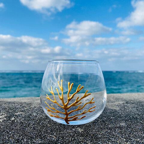 okinawan coral(珊瑚畑)ゴールド/ゆらゆらグラス(1個)320ml