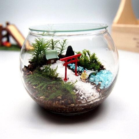 苔神社【苔テラリウム・手作りキット一式】金魚鉢