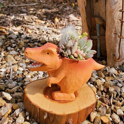【再再再再販】オシャカワな恐竜のサボテンor多肉植物の鉢植え(brown)  ティラノサウルス