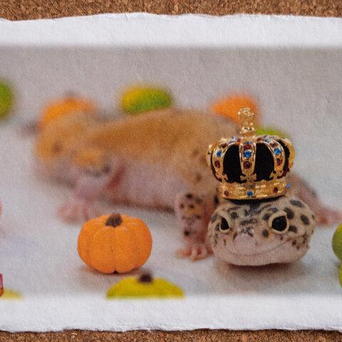 ヤモリ☆手漉き和紙アート写真インテリア★ハロウィンの王様★浮かせ台付き・送料無料(ハガキ・A4・A3ノビサイズ)