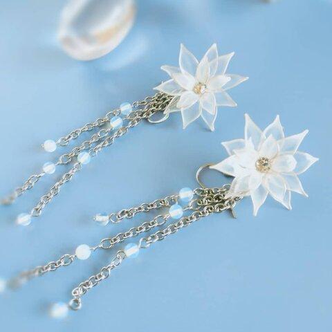 白い花ラフィネ
