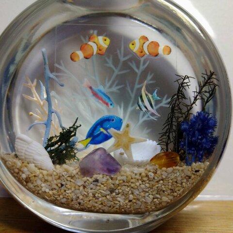 熱帯魚の楽園【ハーバリウム海~サークル150㎖】💛