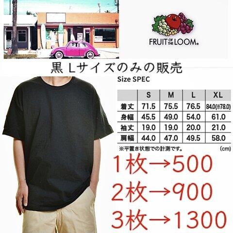 フルーツオブザルームヘビーコットンTシャツ