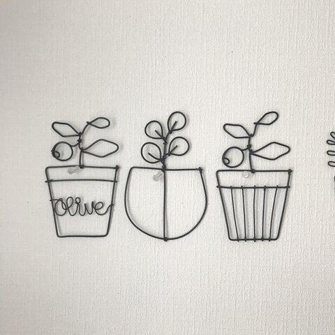 オリーブユーカリ鉢植え3点セット*ワイヤークラフト