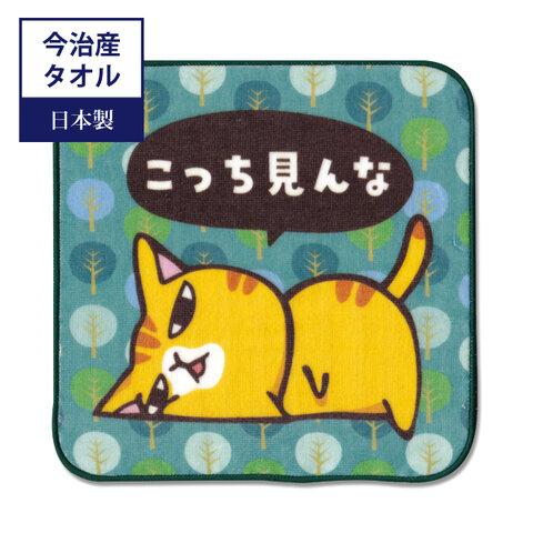 10月限定1320円→1200円 今治タオル まめ猫ハンドタオル  こっち見んな HT-2