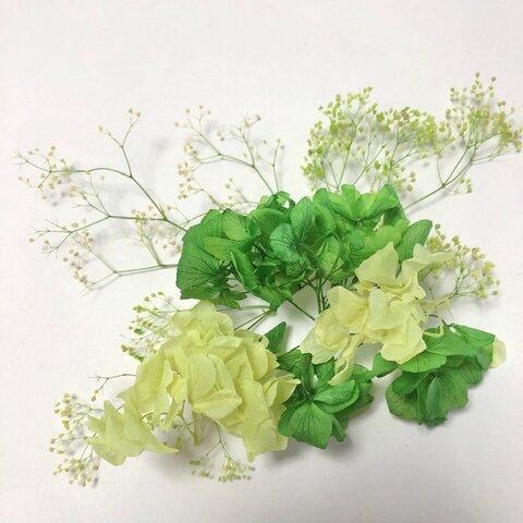 花材セット あじさいとミニカスミ グリーン系
