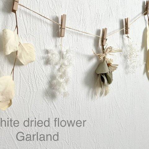 White dried flower ガーランド