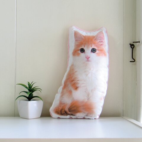 犬 猫 ペット 動物 ノルウェージャン クッション ぬいぐるみ インテリア メモリアル プレゼント オーダーメイド 画像 写真 フワモコA-n