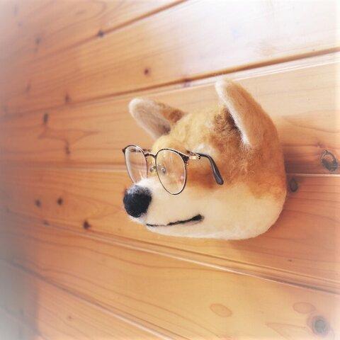 めがね掛け犬(壁掛け) 【柴犬】むぎ