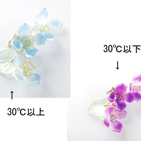 色変わり紫陽花のイヤーカフ