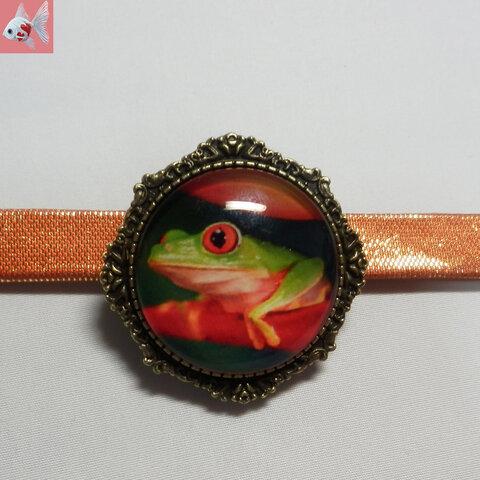 ◆アカメアマガエルの帯留め飾り①