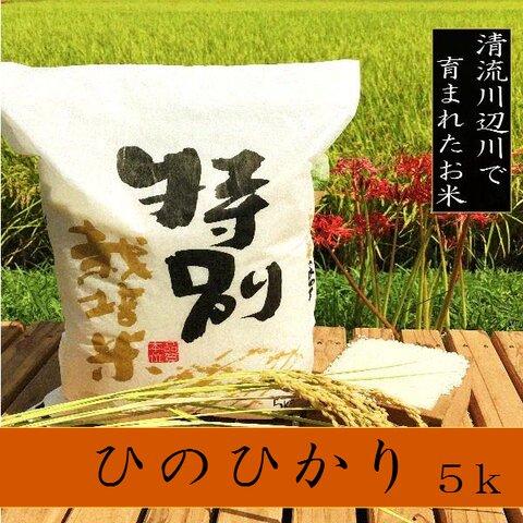 新米特別栽培米ひのひかり5kg 熊本県相良村産 令和3年産 精白米