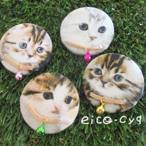 ネコネコ子猫🐈大きなヘアゴム