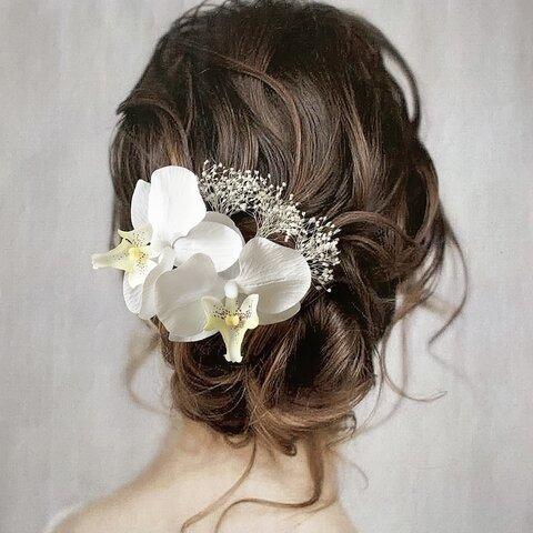 《再販》胡蝶蘭 ヘッドパーツ 髪飾り ヘアアクセサリー 和装 ブライダル 前撮り 白 かすみ草 成人式