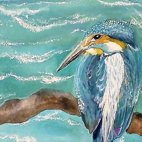海を見つめるカワセミ(原画)