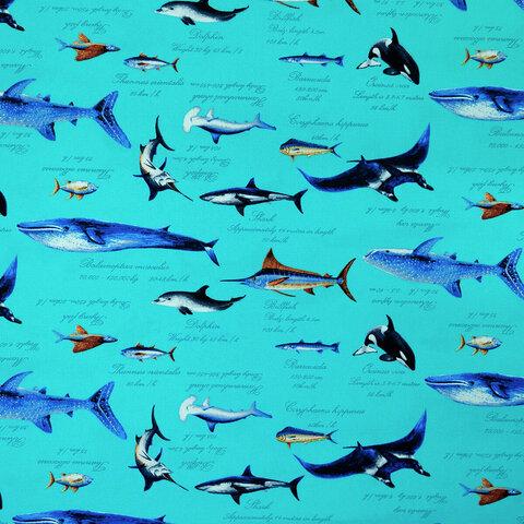 オックス生地【50×110cm】 海 ジンベイザメ イルカ エイ 魚 オックス 生地 布 青 水色 ブルー