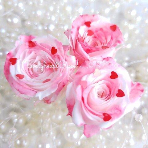 1輪販売ラブリィハートローズ♡*° 加工花材 ハーバリウム プリザーブドフラワー