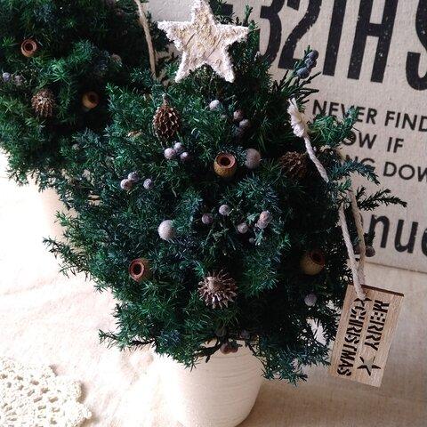 *再……販*シャビーシックなクリスマスツリー🎄 クリスマス  ウェディング  インテリア  贈り物