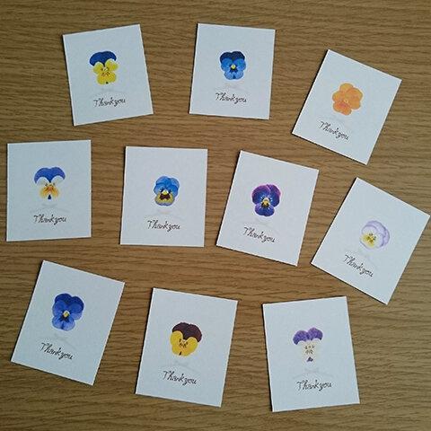 サンキュー メッセージカード 花 12