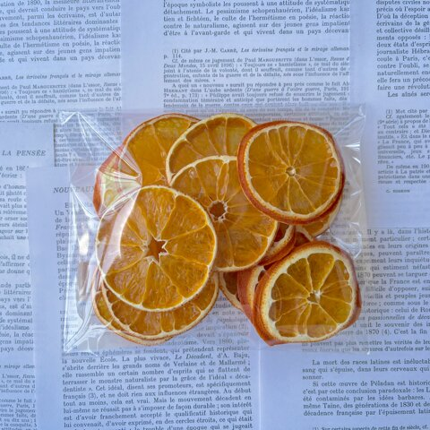 10/20 入荷しました!ドライフラワー ドライフルーツ・オレンジ (12枚入り)