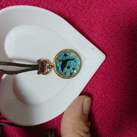 送料無料星と遊ぶイルカの懐中時計ネックレス