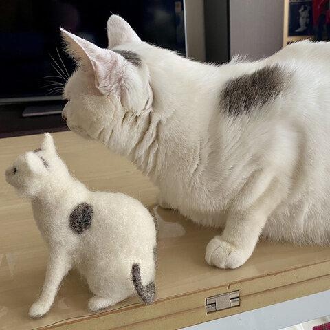 羊毛フェルト オーダーメイド 猫