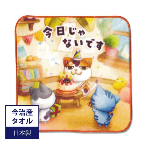 10月限定1320円→1200円 今治タオル まめ猫ハンドタオル  今日じゃないです HT-3