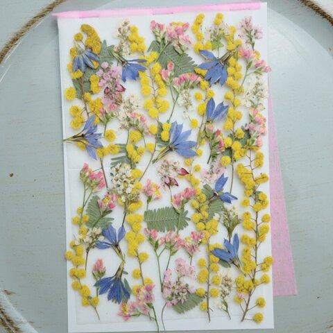 押し花ミモザと小花